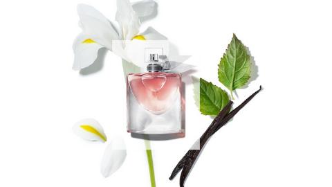 flaconi-10-prozent-parfum